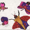 Butterflies - Haley 7